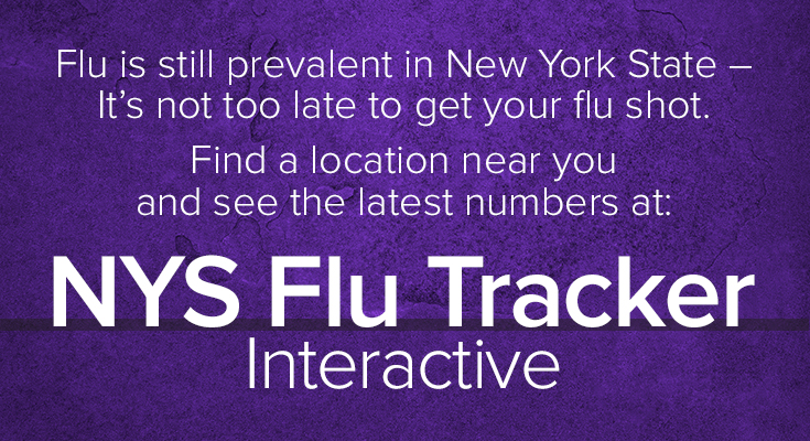 Stop the Flu. It's up to you!